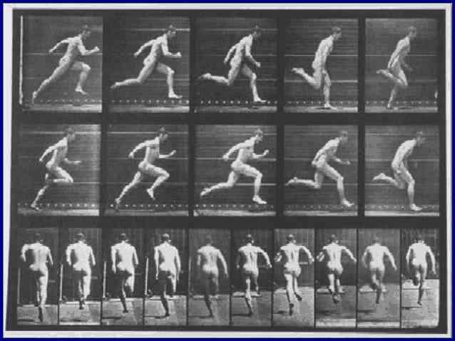 Фото последовательность бега. Автор Эдвард Мейбридж