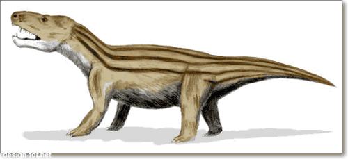 Цинодонт Cynognathus