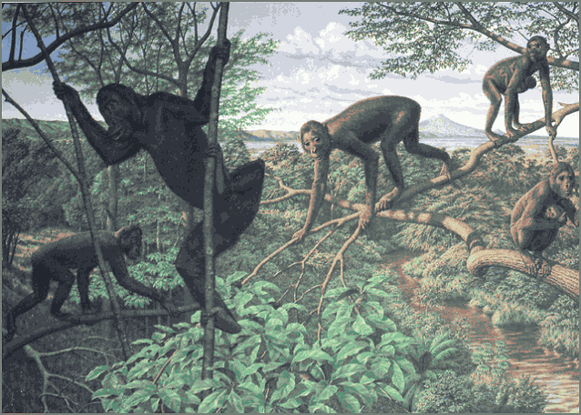 обезьяна лазает по деревьям