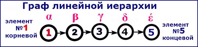 Граф линейной иерархии из пяти членов