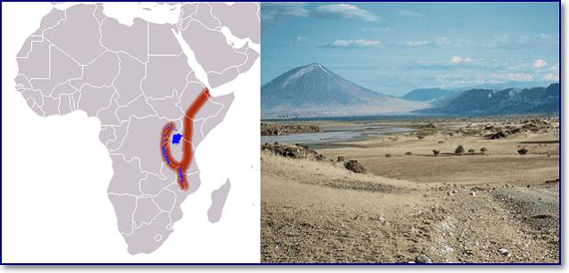 Восточно-Африканская рифтовая долина