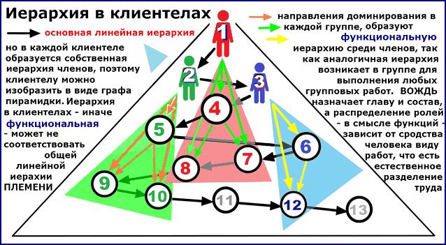 Структура ПЛЕМЕНИ с выделившимися клиентелами