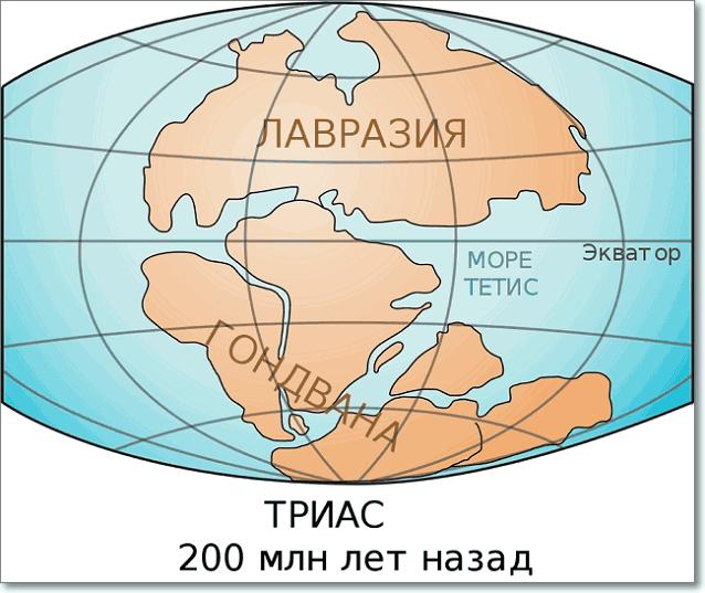 Раскол суперконтинента Пангея на два Лавразия и Гондвана