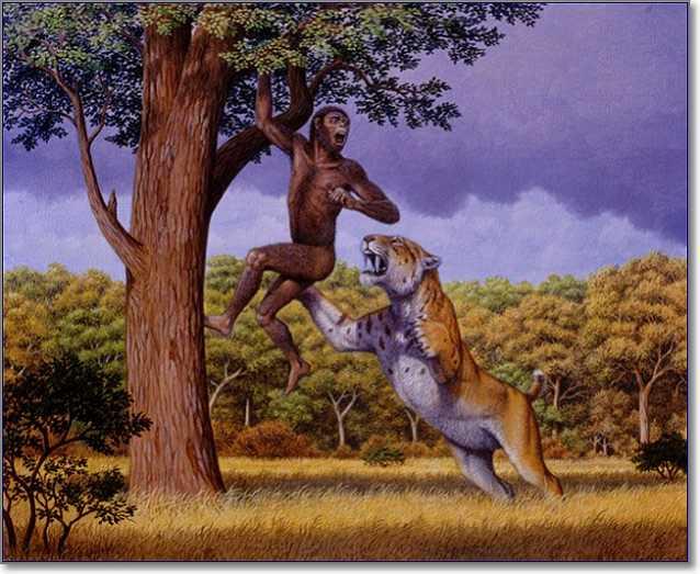 Гоминиды спасались от хищников на деревьях