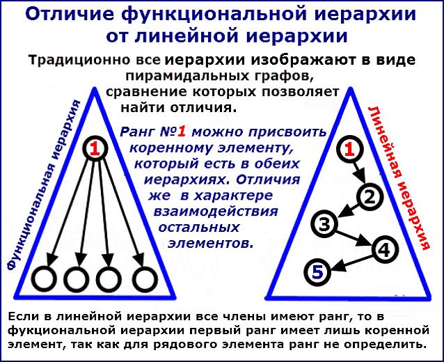 Сравнение графов функциональной и линейной иерархий