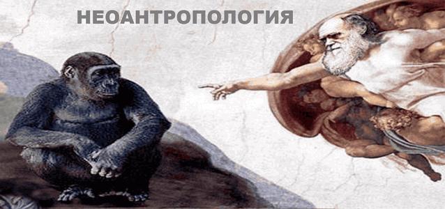 Рубрика НЕОАНТРОПОЛОГИЯ