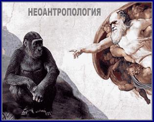 Перейти в РУБРИКУ НЕАНТРОПОЛОГИЯ