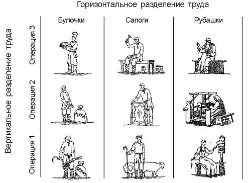 профессиональное разделение труда