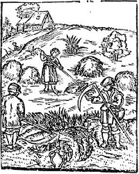 земледелие сенокос