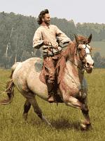 Одомашнивание лошади индоевропейцами