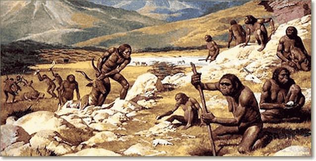 племя гоминид