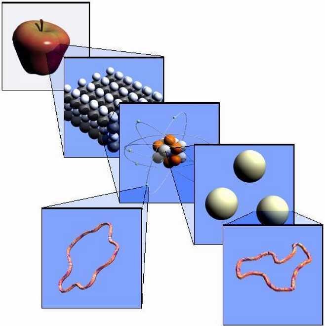 структура вещества яблока