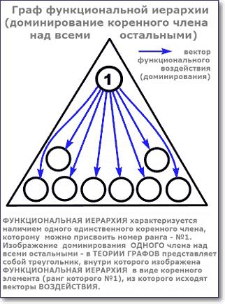 граф функциональной иерархии коренного члена над остальными