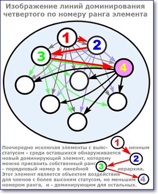 изображение линий иерархии