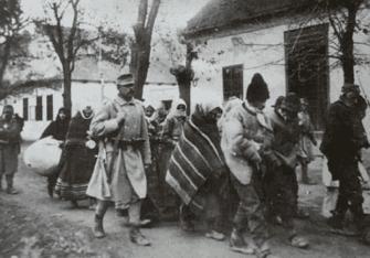 галицкие украинцы относились к русинам так же как хорваты к сербам